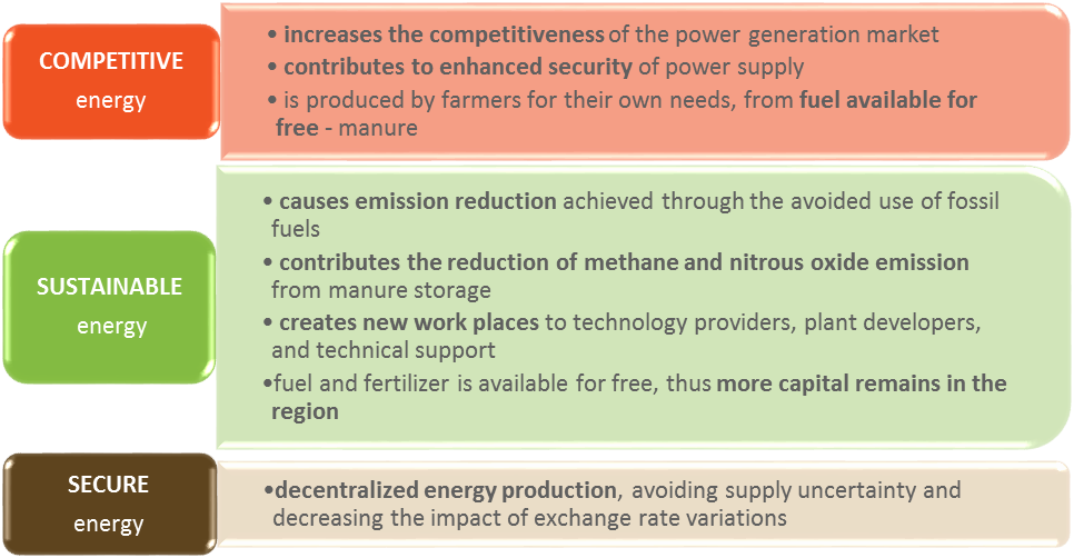 Micro-scale biogas energy production characteristics